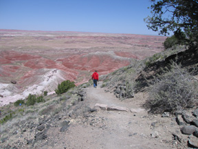 Hiking in the Petrified National Forest