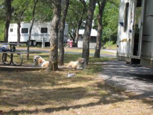 Eisenhower State Park, Denison Texas, Camping