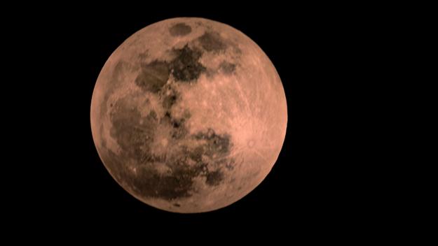 blood moon january 2019 dallas tx -#main